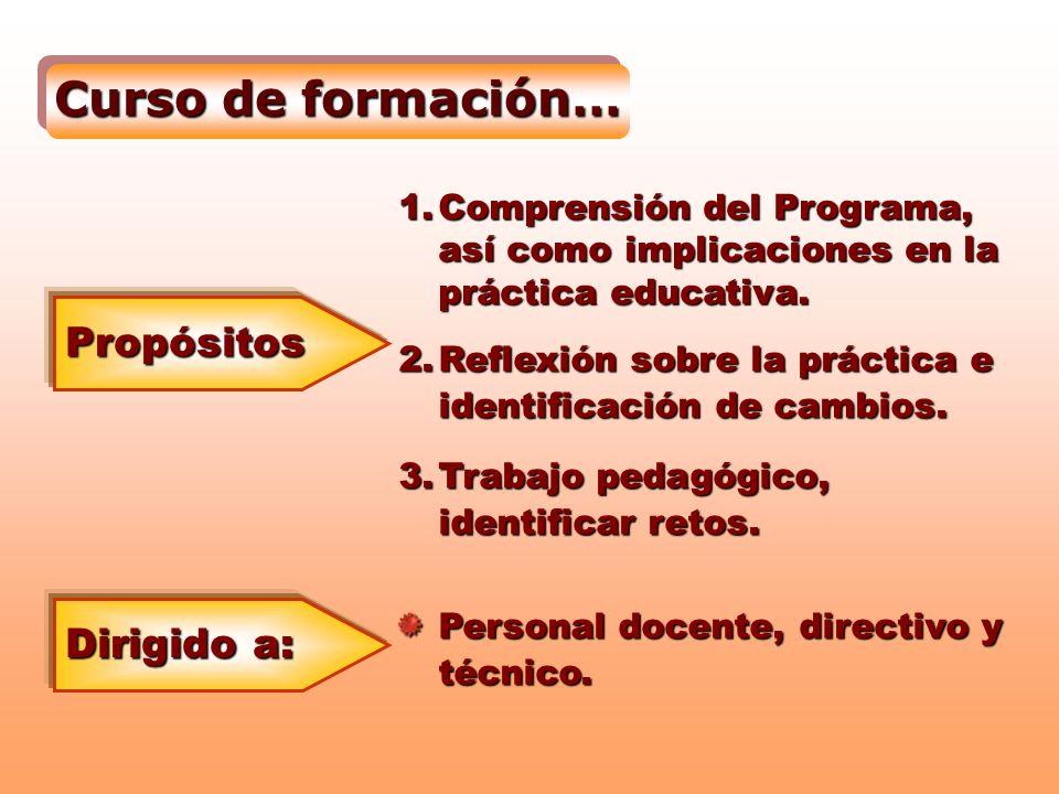 Curso de formación… Propósitos Dirigido a:
