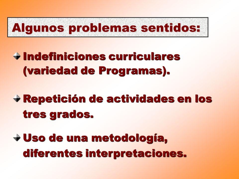 Algunos problemas sentidos: