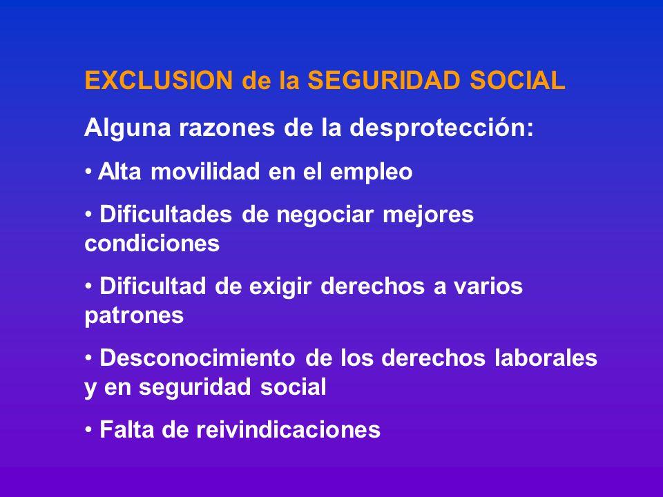 EXCLUSION de la SEGURIDAD SOCIAL Alguna razones de la desprotección: