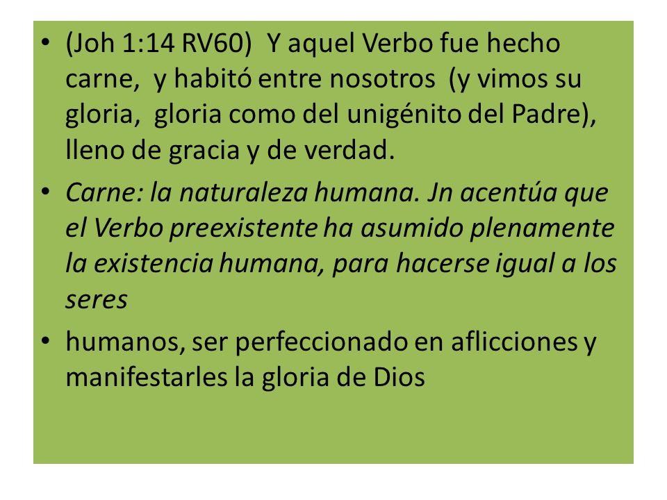 (Joh 1:14 RV60) Y aquel Verbo fue hecho carne, y habitó entre nosotros (y vimos su gloria, gloria como del unigénito del Padre), lleno de gracia y de verdad.