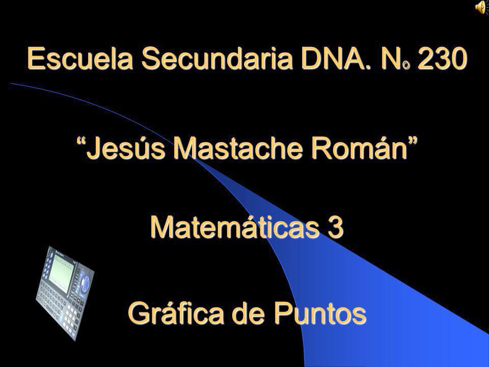 Escuela Secundaria DNA. No 230 Jesús Mastache Román