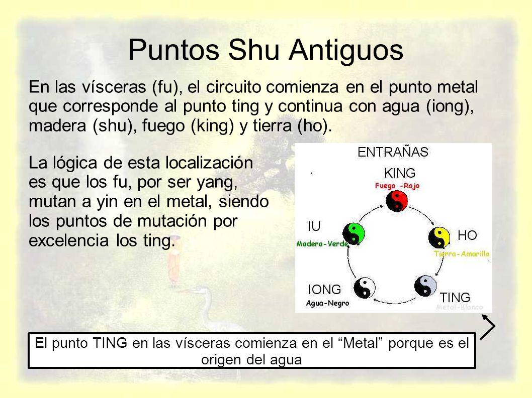 Puntos Shu Antiguos