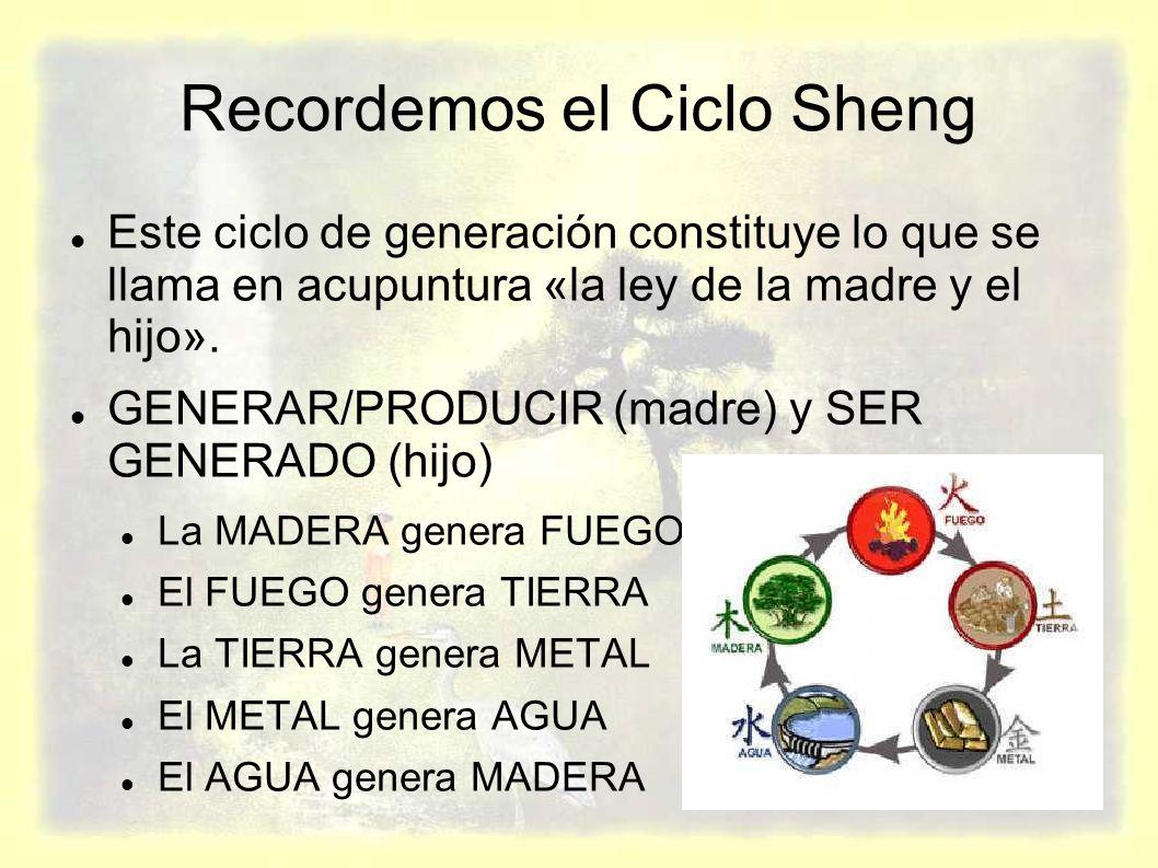 Recordemos el Ciclo Sheng