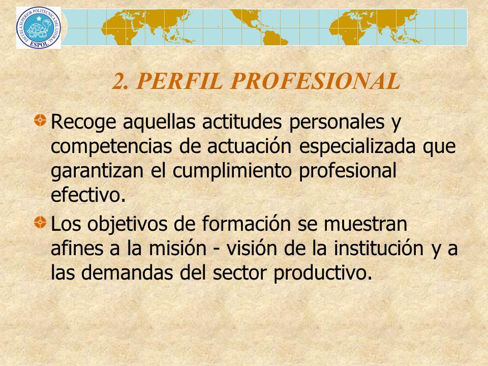 2. PERFIL PROFESIONAL