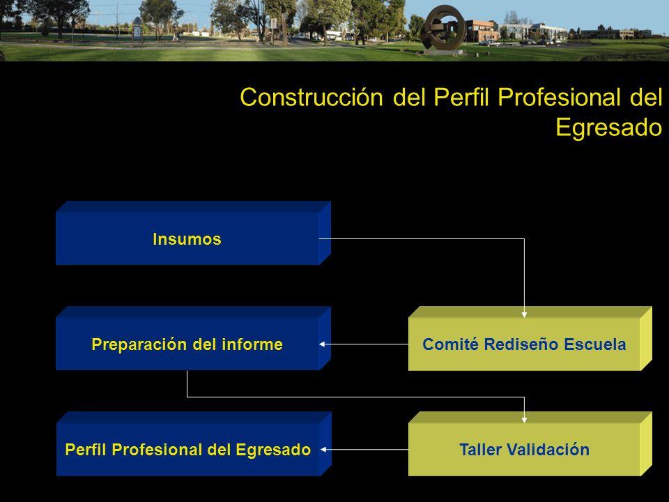 Construcción del Perfil Profesional del Egresado