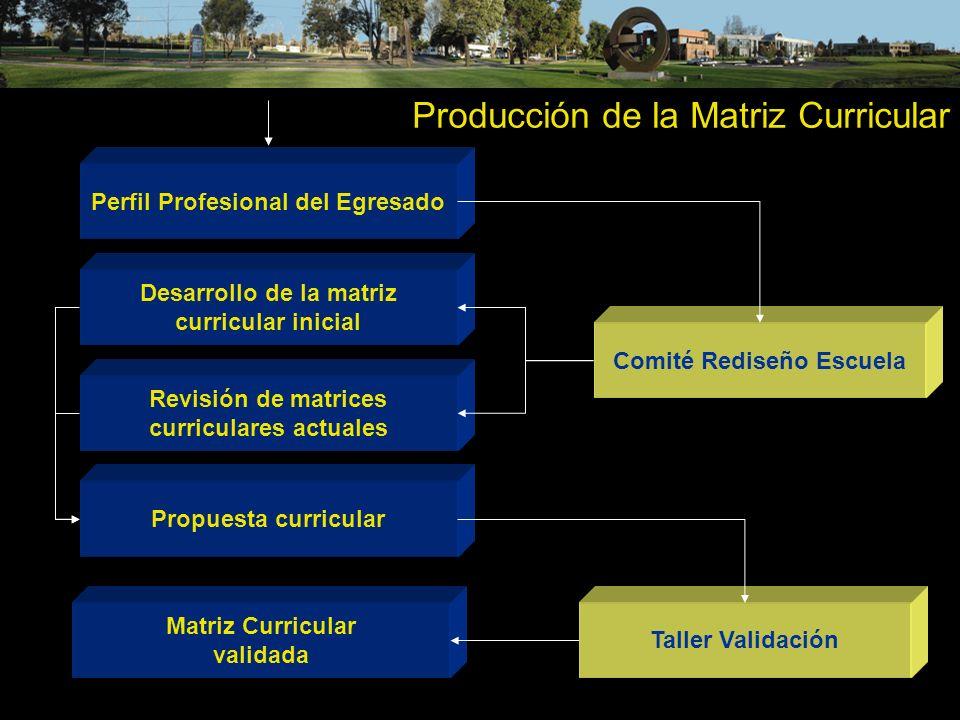 Producción de la Matriz Curricular