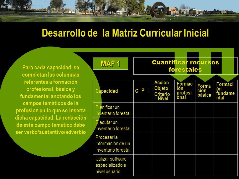 Desarrollo de la Matriz Curricular Inicial