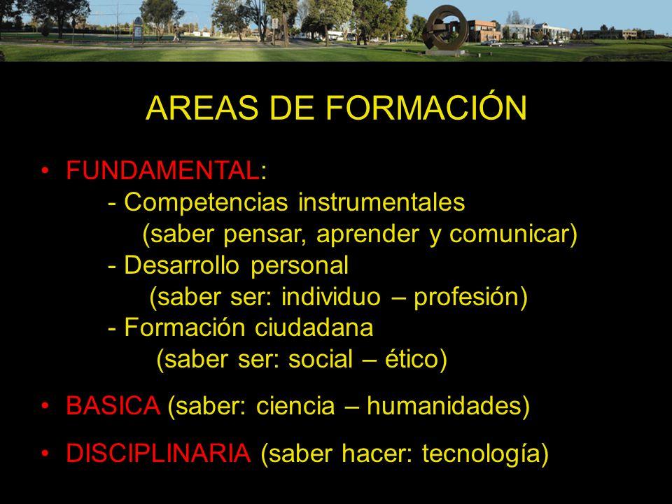 AREAS DE FORMACIÓN FUNDAMENTAL: - Competencias instrumentales