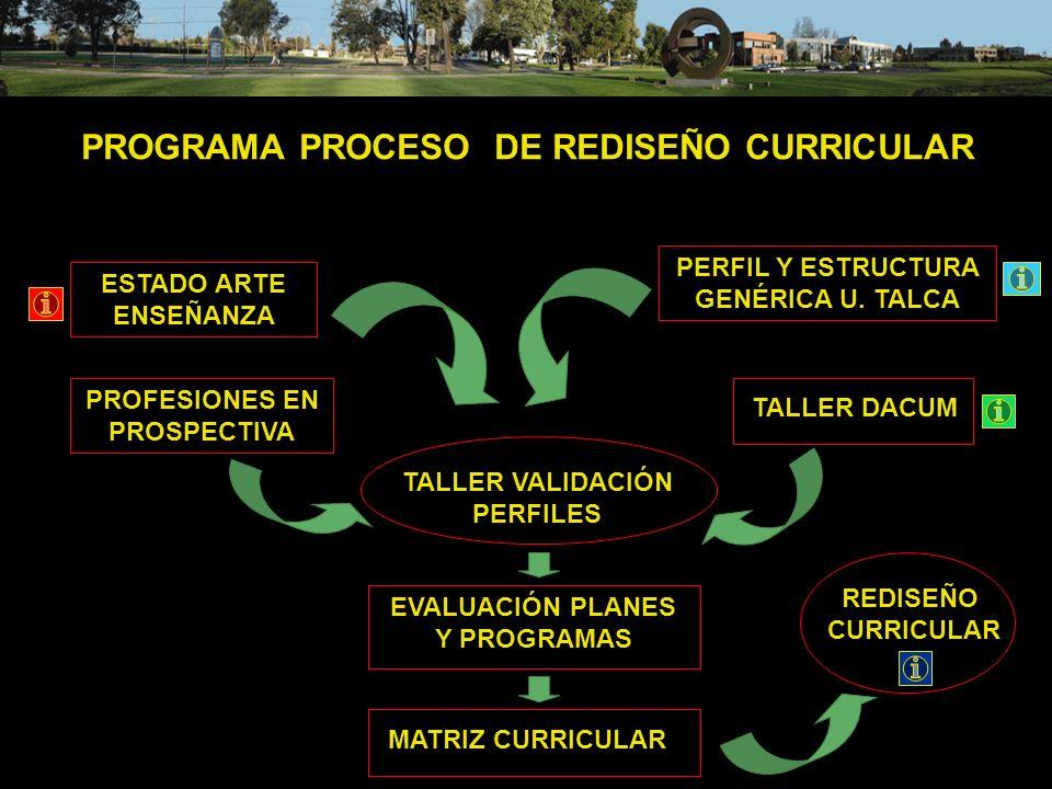 PROGRAMA PROCESO DE REDISEÑO CURRICULAR
