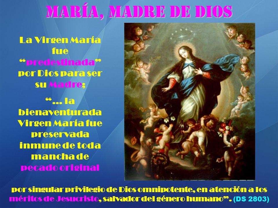 Resultado de imagen de dios escogio a maria
