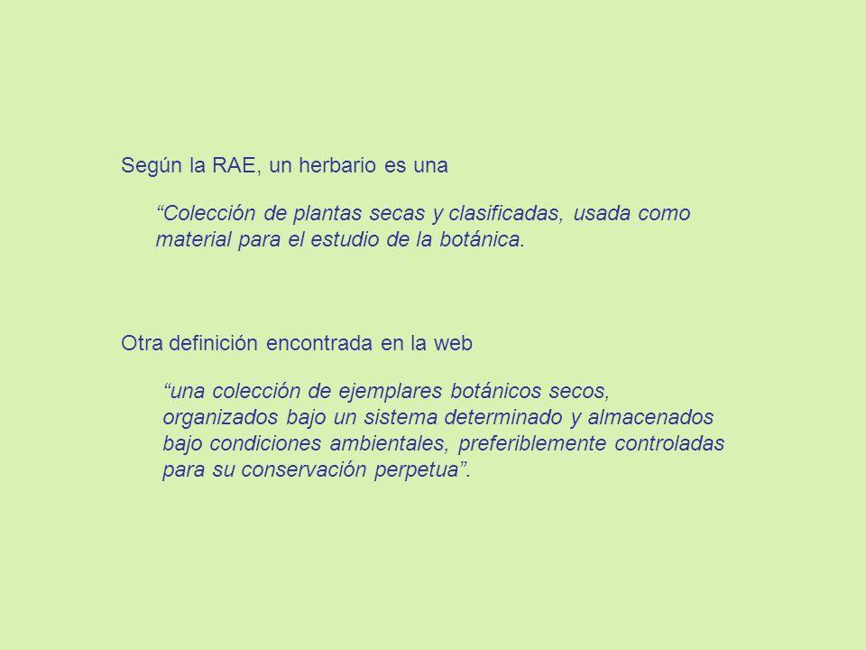 Según la RAE, un herbario es una
