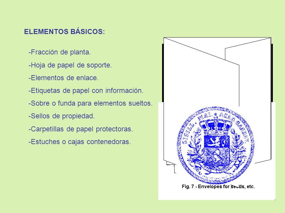 ELEMENTOS BÁSICOS:Fracción de planta. Hoja de papel de soporte. Elementos de enlace. Etiquetas de papel con información.