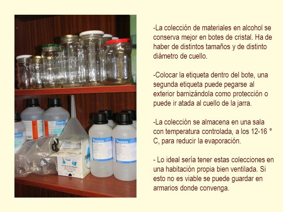 La colección de materiales en alcohol se conserva mejor en botes de cristal. Ha de haber de distintos tamaños y de distinto diámetro de cuello.