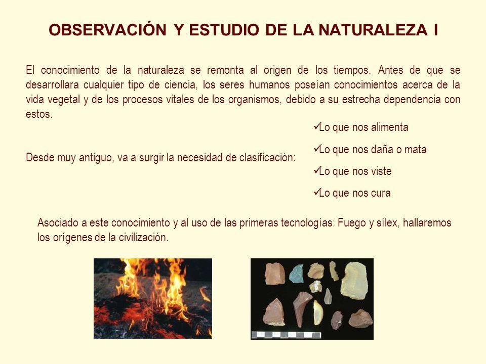 OBSERVACIÓN Y ESTUDIO DE LA NATURALEZA I
