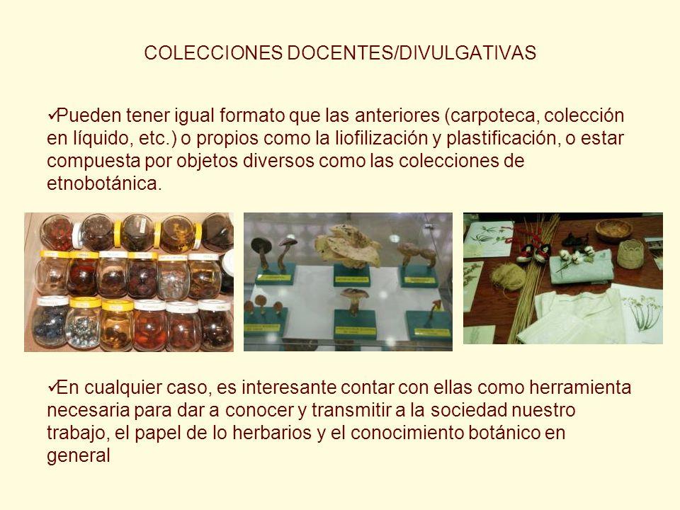COLECCIONES DOCENTES/DIVULGATIVAS