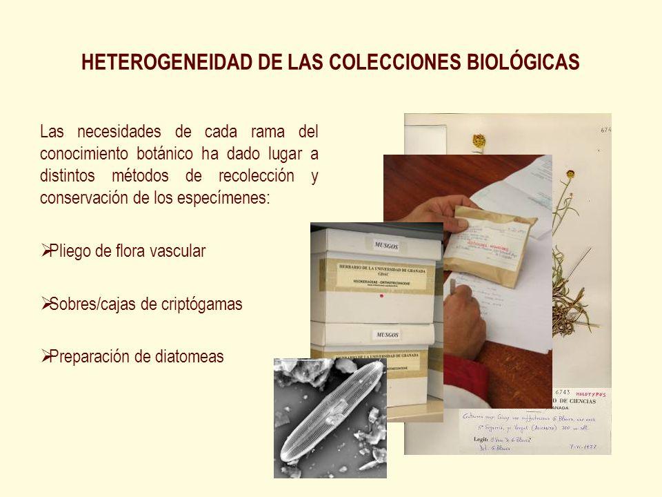 HETEROGENEIDAD DE LAS COLECCIONES BIOLÓGICAS