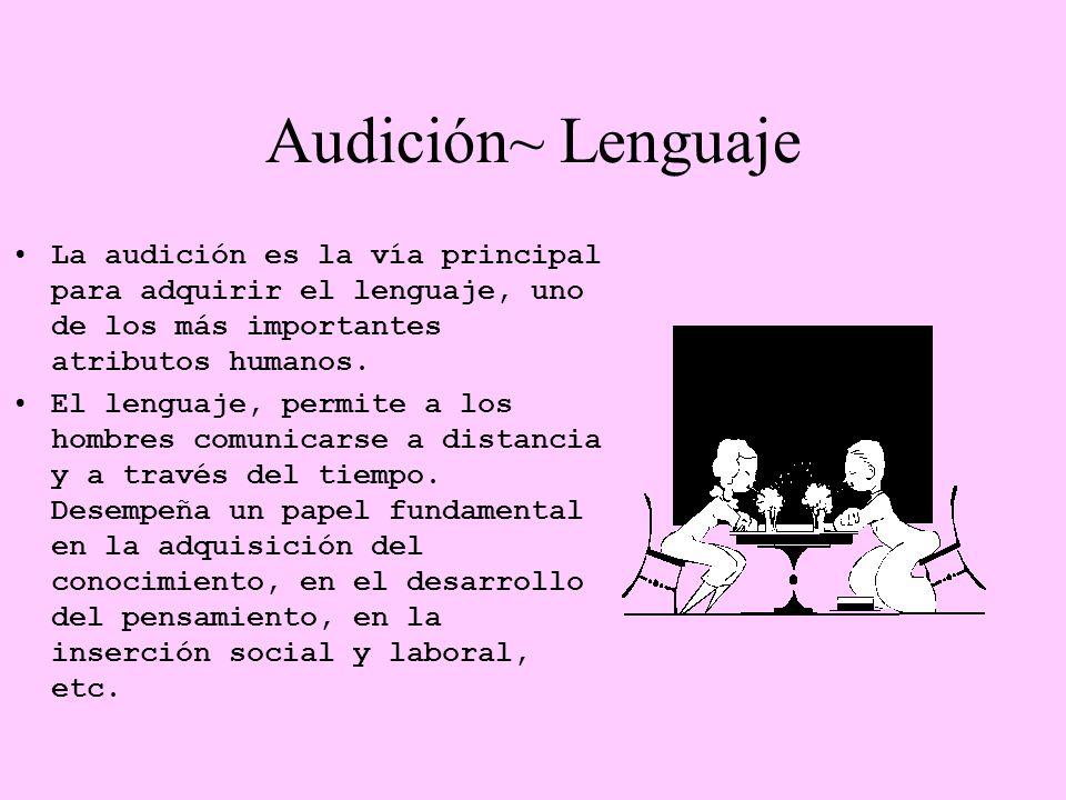 Audición~ Lenguaje La audición es la vía principal para adquirir el lenguaje, uno de los más importantes atributos humanos.