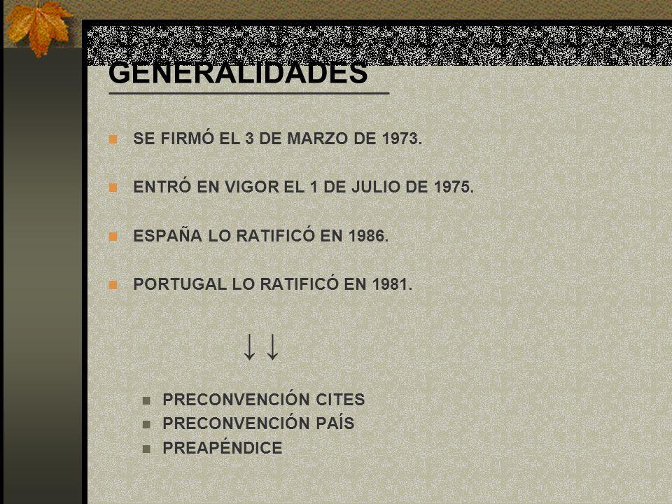 GENERALIDADES SE FIRMÓ EL 3 DE MARZO DE 1973.