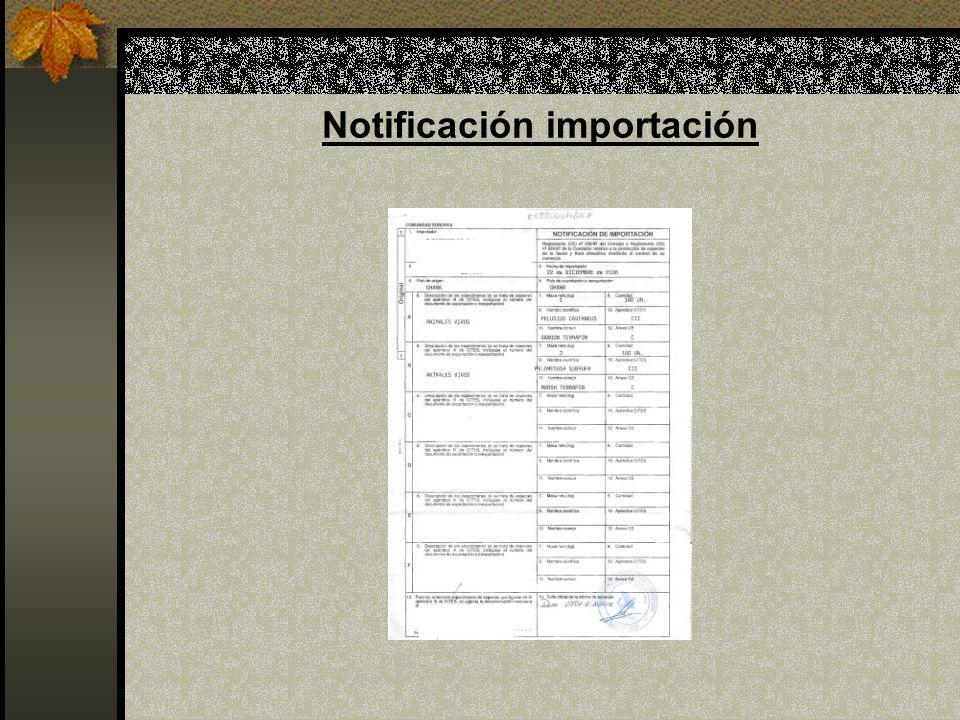 Notificación importación