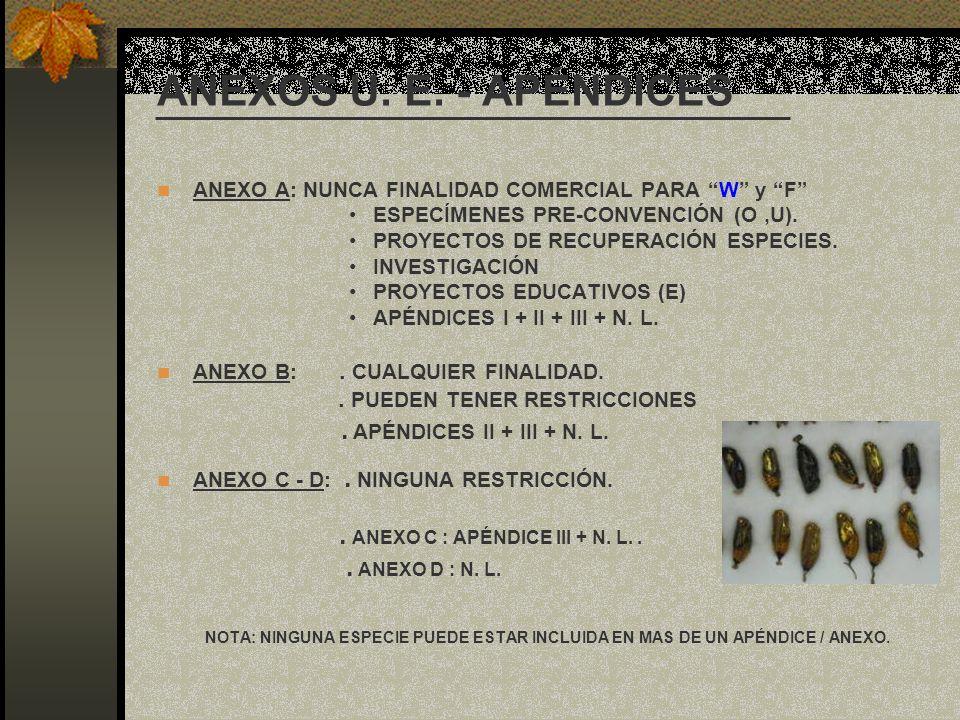 ANEXOS U. E. - APÉNDICES ANEXO A: NUNCA FINALIDAD COMERCIAL PARA W y F ESPECÍMENES PRE-CONVENCIÓN (O ,U).