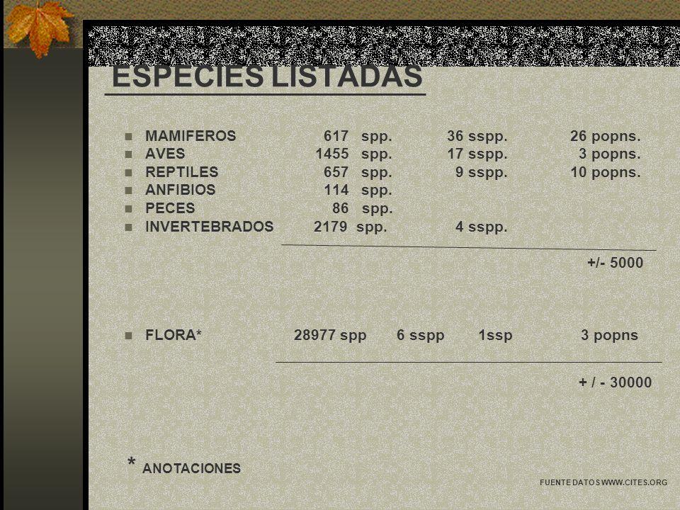 ESPECIES LISTADAS * ANOTACIONES MAMIFEROS 617 spp. 36 sspp. 26 popns.
