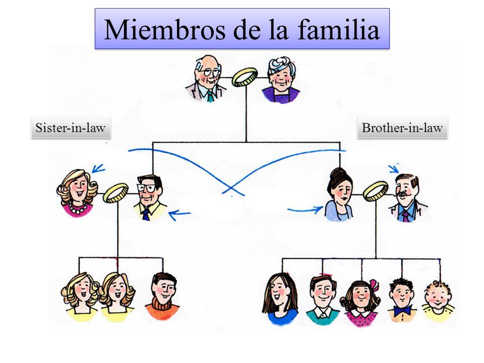 Miembros de la familia Sister-in-law Brother-in-law