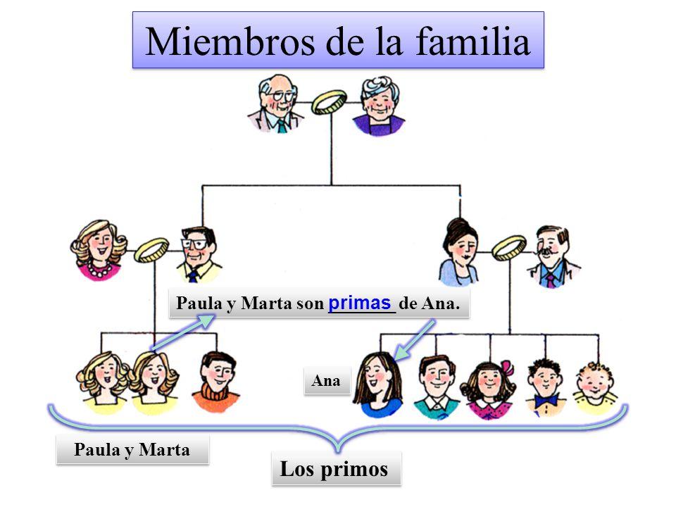 Miembros de la familia Los primos Paula y Marta son _______ de Ana.