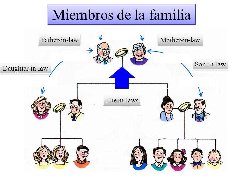 Miembros de la familia Father-in-law Mother-in-law Son-in-law