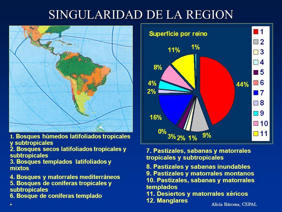 SINGULARIDAD DE LA REGION