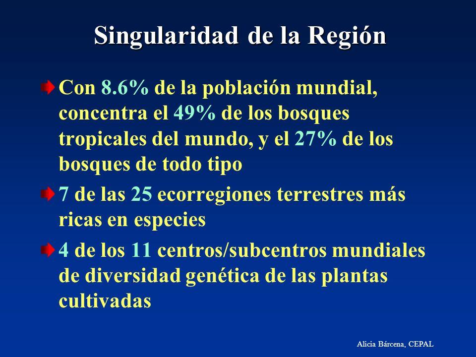 Singularidad de la Región