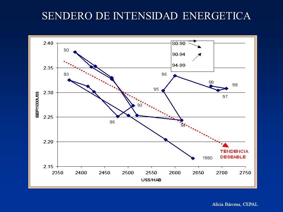 SENDERO DE INTENSIDAD ENERGETICA