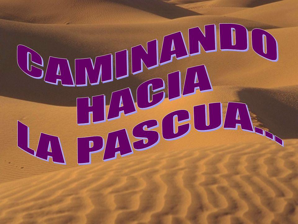 CAMINANDO HACIA LA PASCUA...