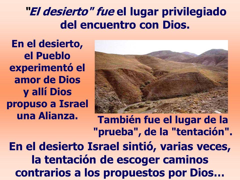 El desierto fue el lugar privilegiado del encuentro con Dios.