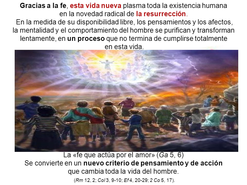 Gracias a la fe, esta vida nueva plasma toda la existencia humana