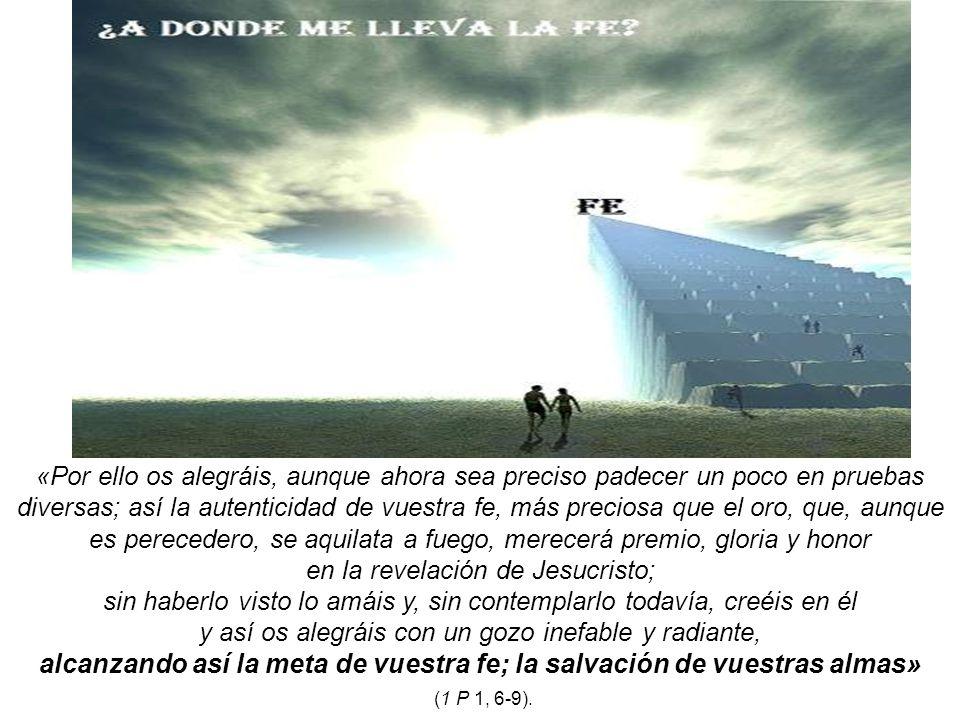 alcanzando así la meta de vuestra fe; la salvación de vuestras almas»