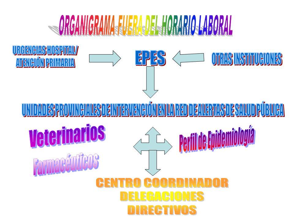 ORGANIGRAMA FUERA DEL HORARIO LABORAL