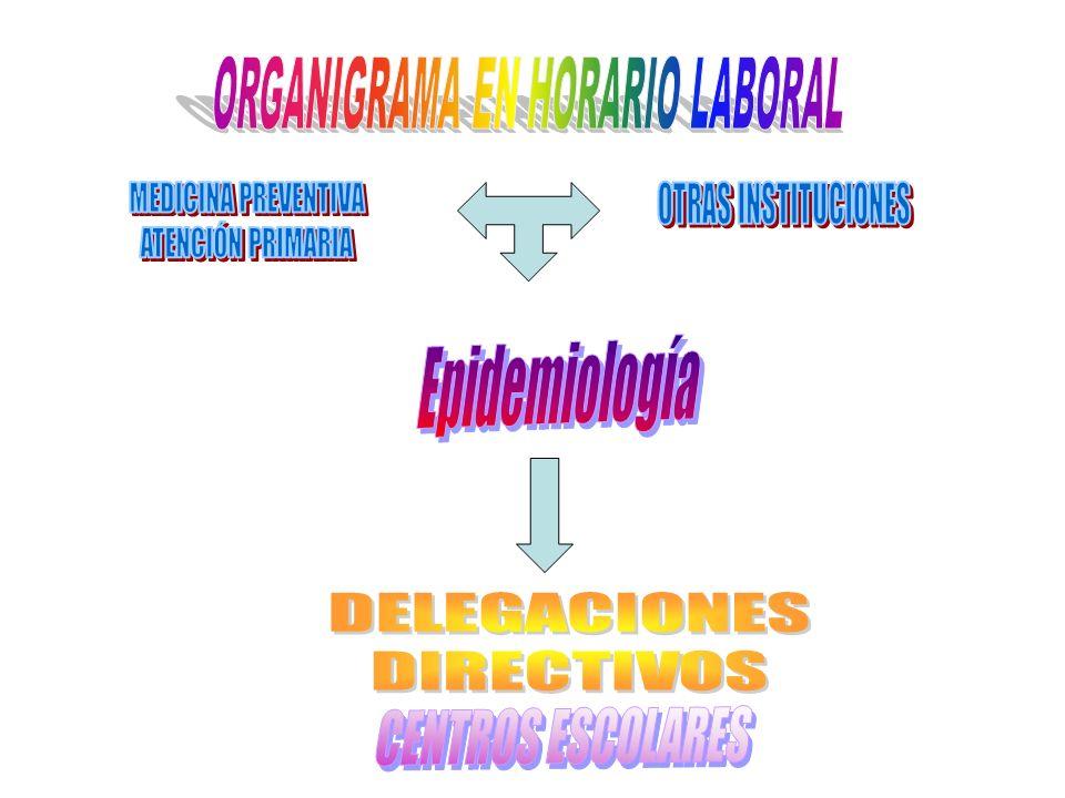 ORGANIGRAMA EN HORARIO LABORAL
