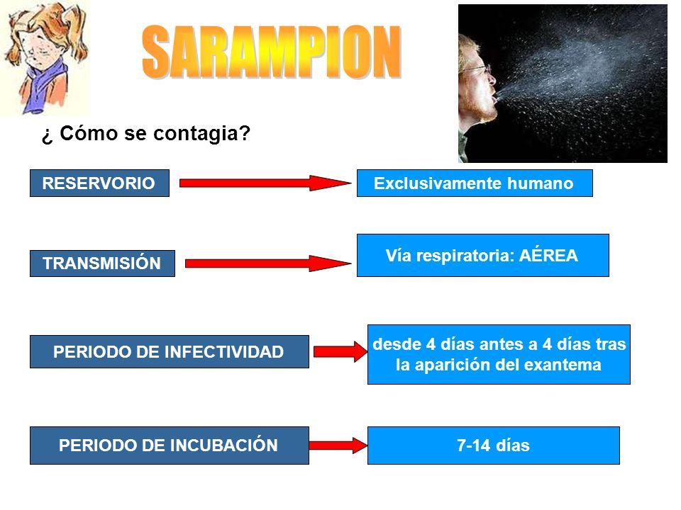 SARAMPION ¿ Cómo se contagia RESERVORIO Exclusivamente humano