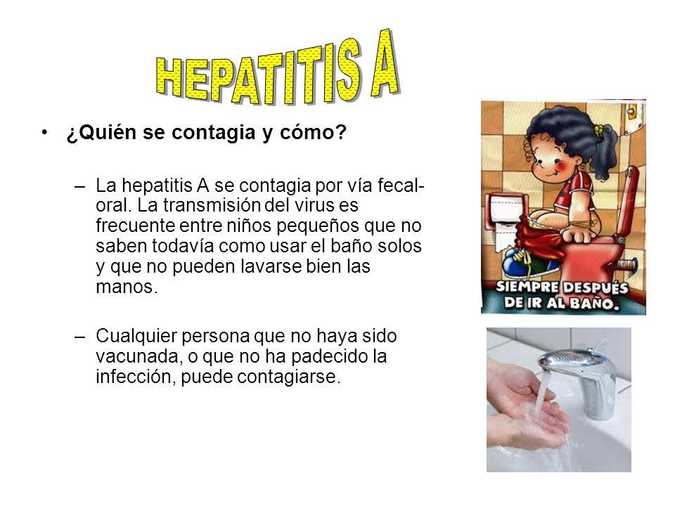 HEPATITIS A ¿Quién se contagia y cómo