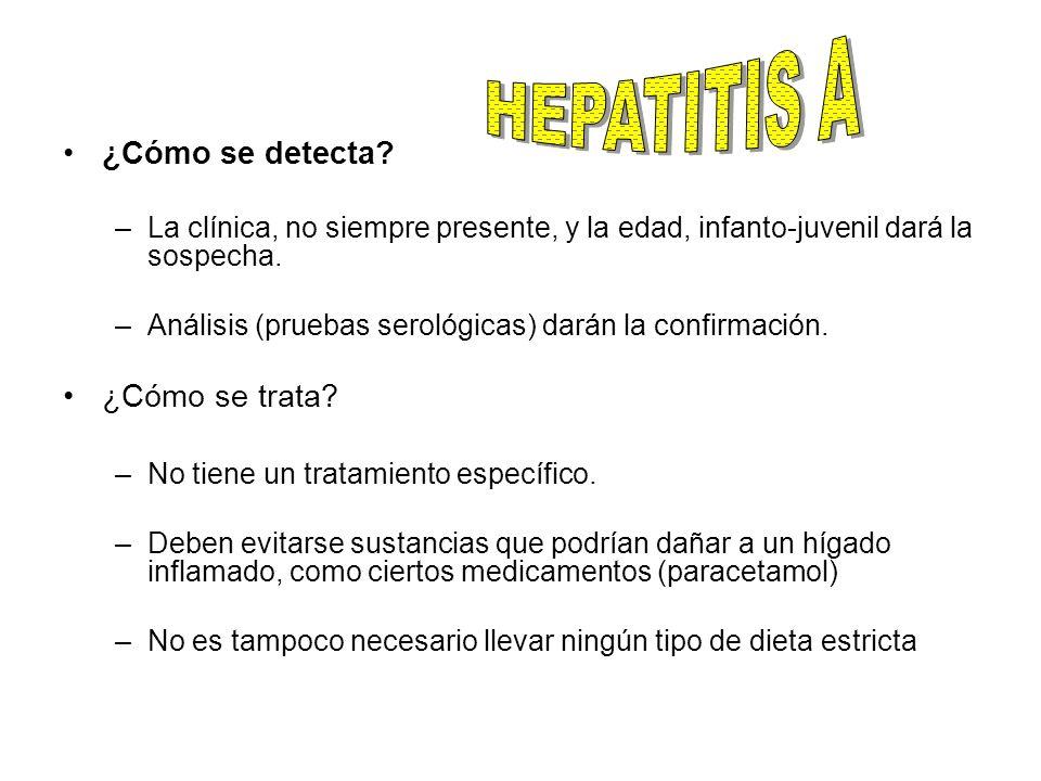HEPATITIS A ¿Cómo se detecta ¿Cómo se trata