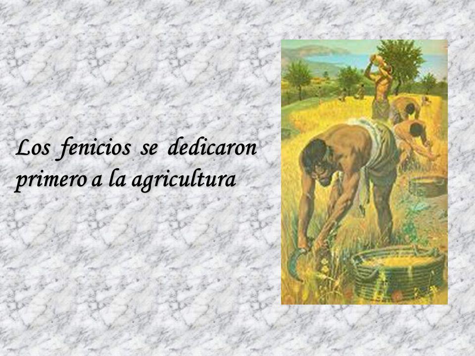 Los fenicios se dedicaron primero a la agricultura