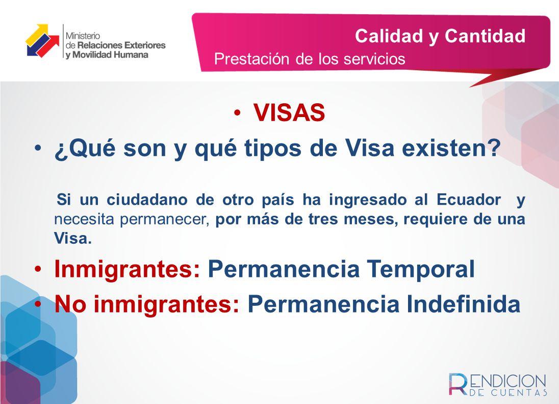 ¿Qué son y qué tipos de Visa existen