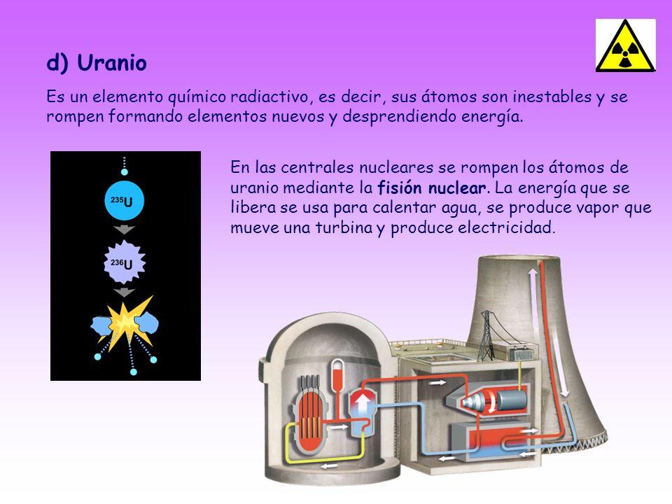 d) UranioEs un elemento químico radiactivo, es decir, sus átomos son inestables y se rompen formando elementos nuevos y desprendiendo energía.