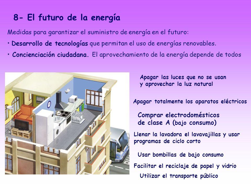 8- El futuro de la energía