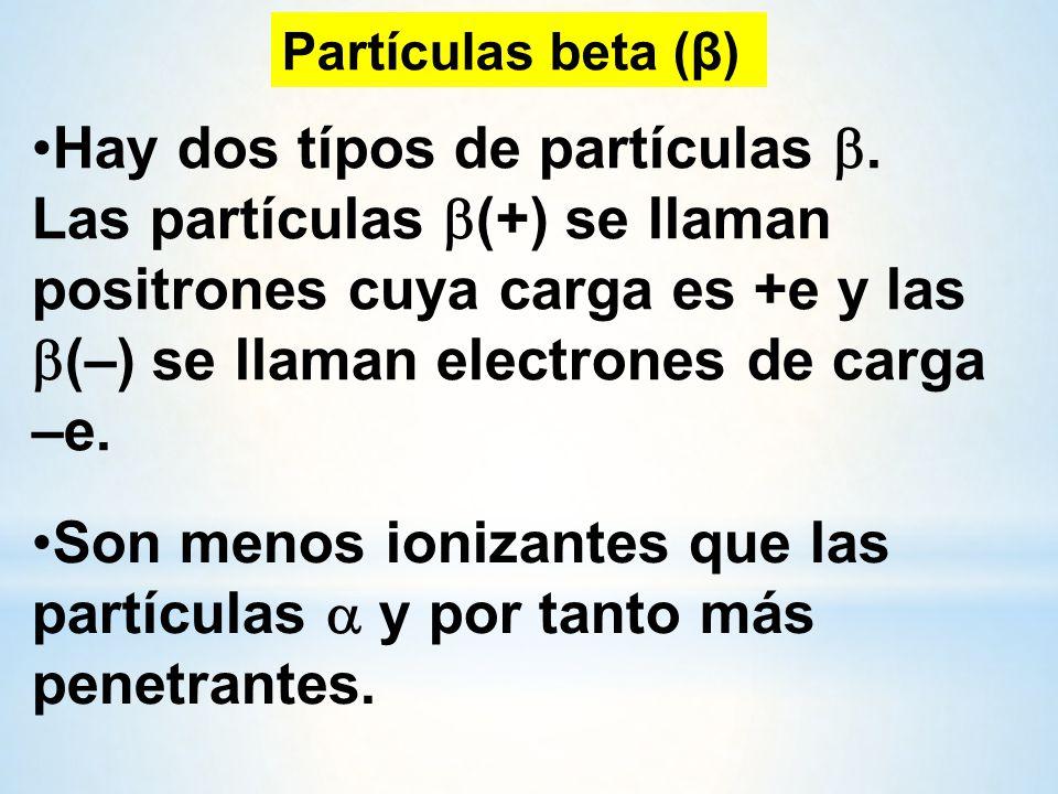 Hay dos típos de partículas .