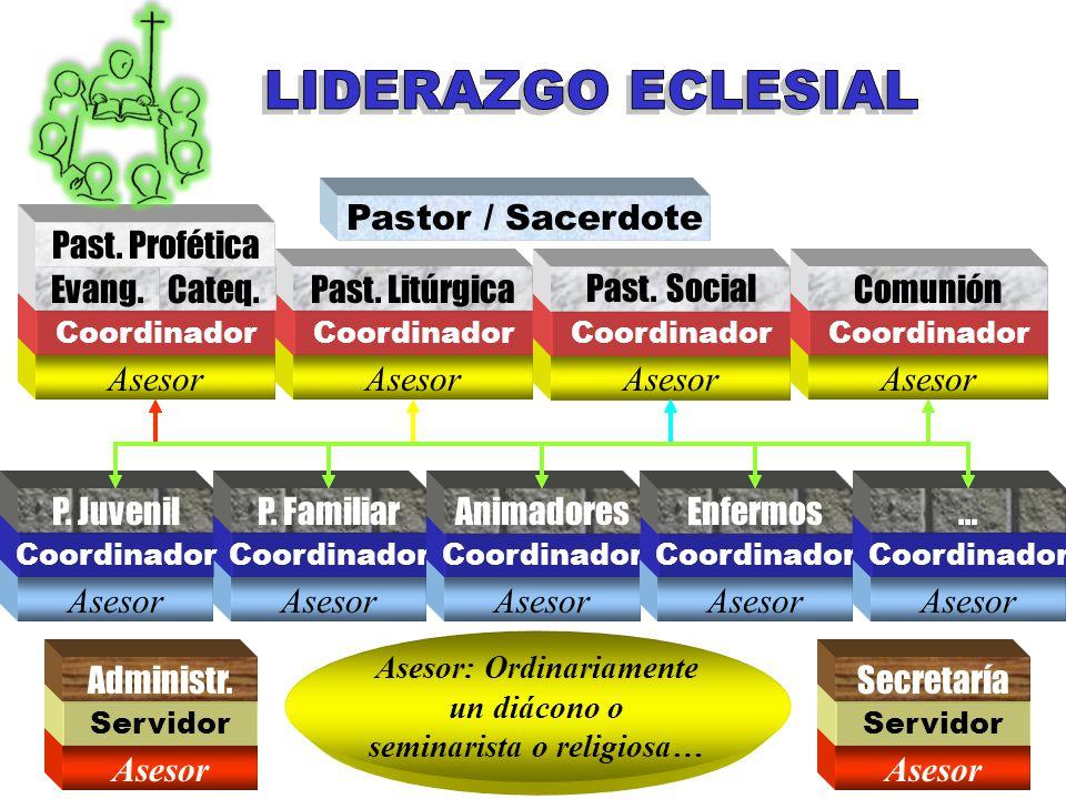 Asesor: Ordinariamente un diácono o seminarista o religiosa…