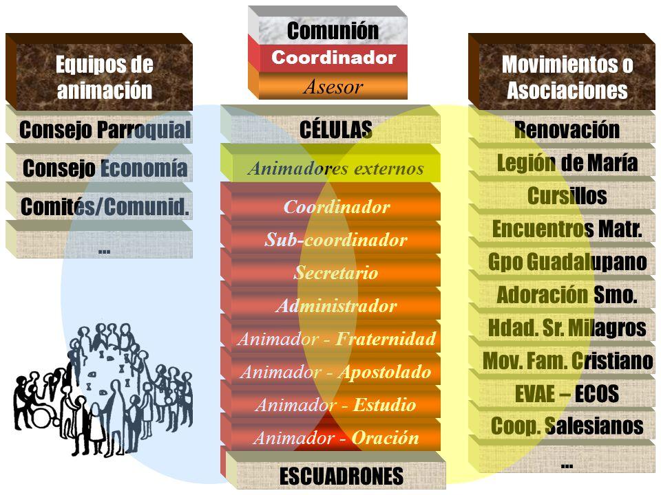 Movimientos o Asociaciones Asesor