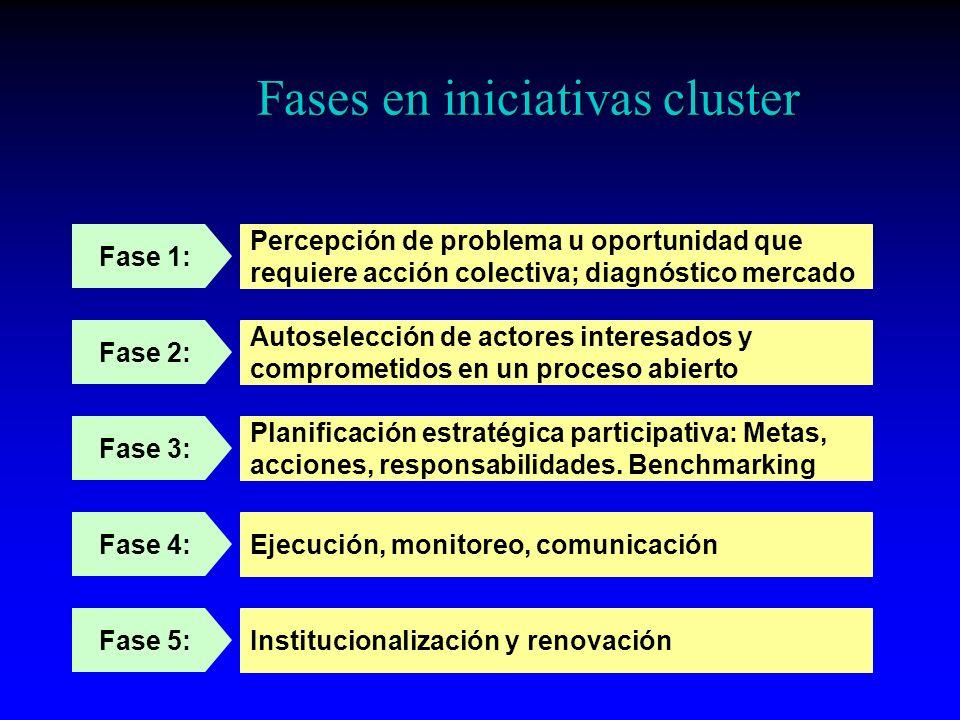 Fases en iniciativas cluster
