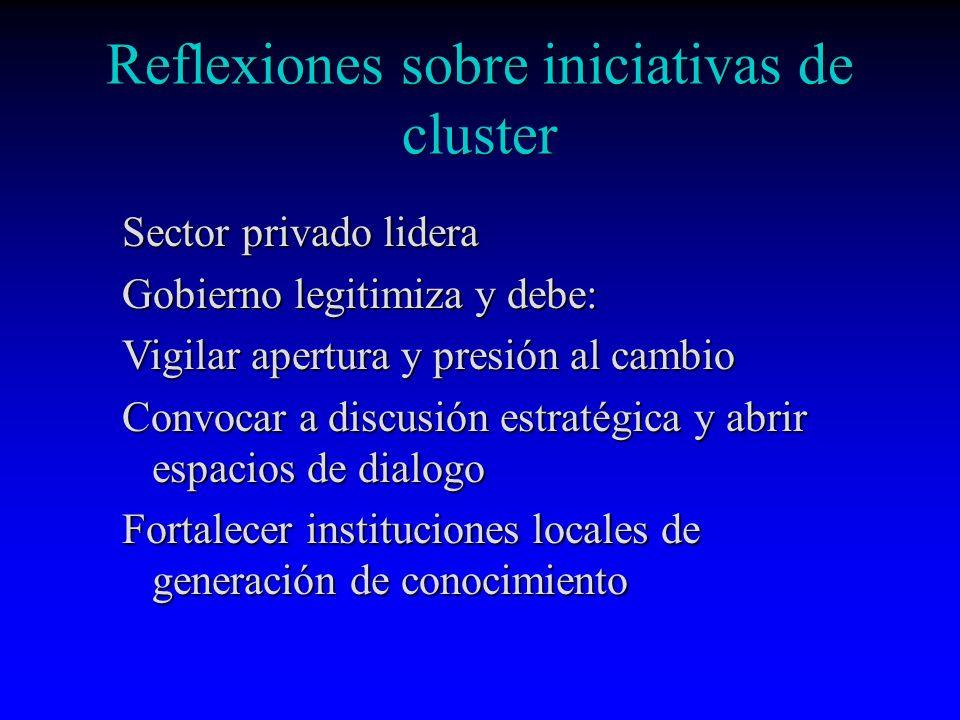 Reflexiones sobre iniciativas de cluster