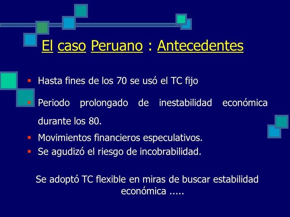 Se adoptó TC flexible en miras de buscar estabilidad económica .....